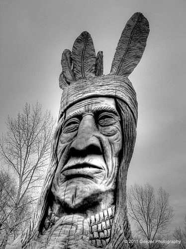 sculpture tree statue utah indian nativeamerican cottonwood murraypark chiefwasatch uteindiantribe