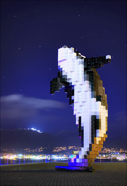 Starry Night Orca
