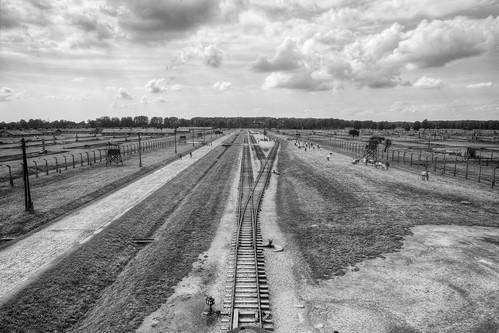 The Tracks into Birkenau