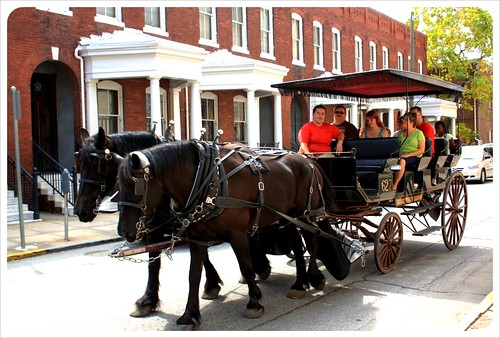 savannah carriage tour