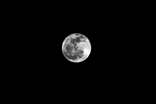 Full moon(Those with picture compensation)