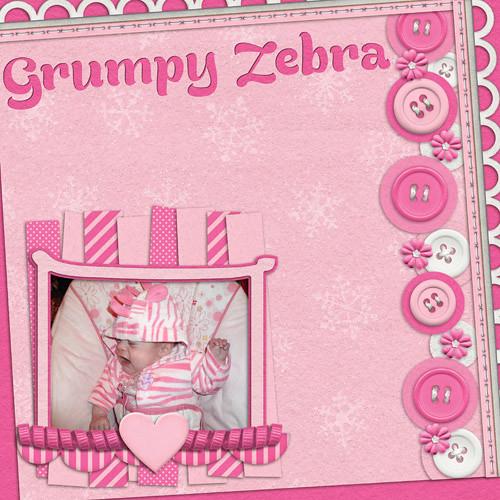 Grumpy Zebra by Lukasmummy