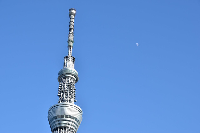 Sky Tree and the Moon
