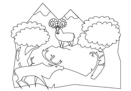 Forest Animals Coloring Book pg 8   Flickr - Photo Sharing!