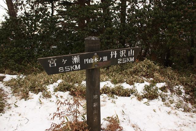 円山木ノ頭
