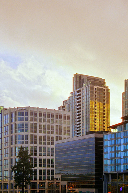 Downtown Bellevue Skyline