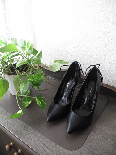 new_pumps1