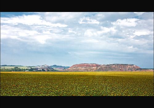 road sky nature clouds canon landscape sunflowers kazantip z17