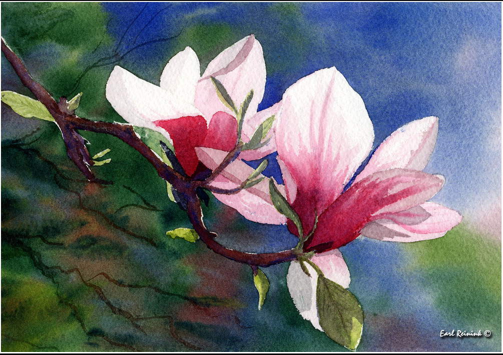 magnolia painting - photo #38