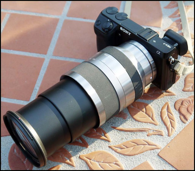 Sony NEX-7 18-200mm zoom lens