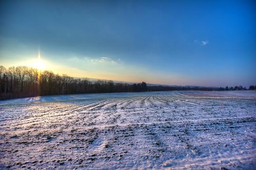 trees sun snow ice field forrest valley hdr tal reuss 7xp umfahrung ottenbach umfahrungsstrasse d3s mygearandme