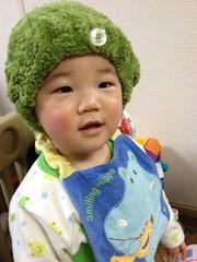 髪の毛を乾かすとらちゃん(2012/2/10)
