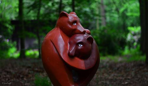 Tannenwalds Tierwelt 13