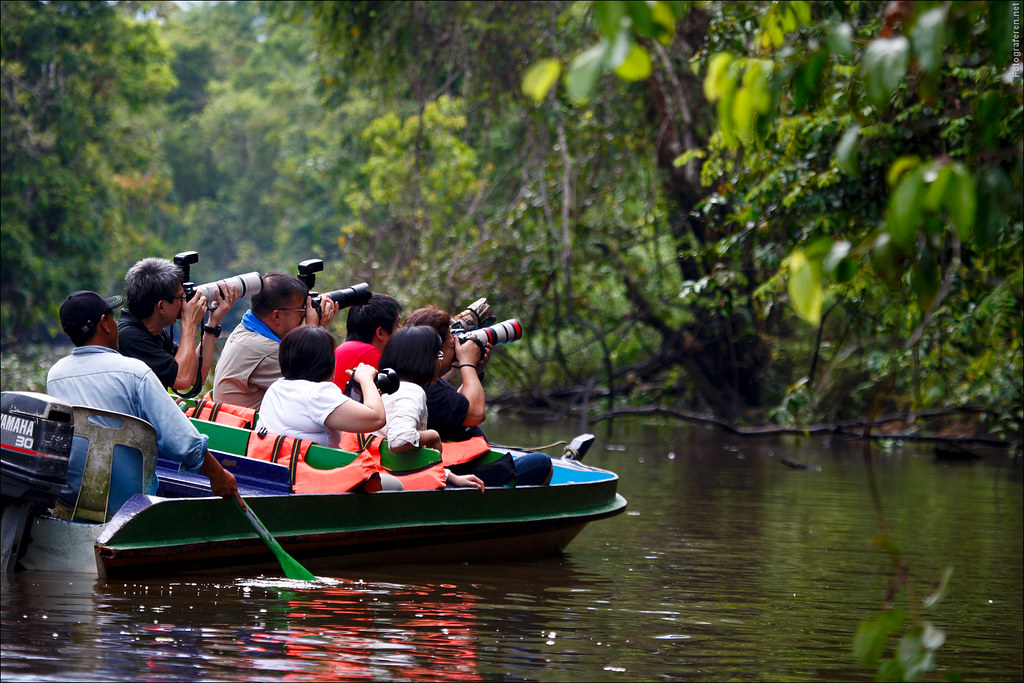 Chinese shooting crowd at a Kinabatangan river cruise