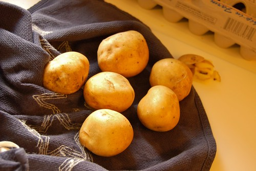 Potatoes, Chillin'.