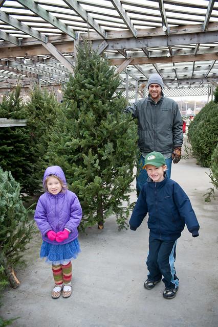 11-27-11_ChristmasTree_011