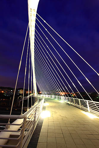 46L9新竹香山豎琴橋