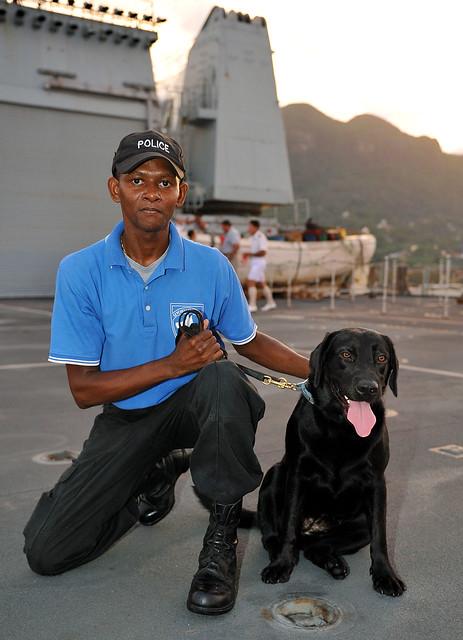 Surrey Police Dog Training Centre