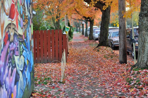 mural-leaves