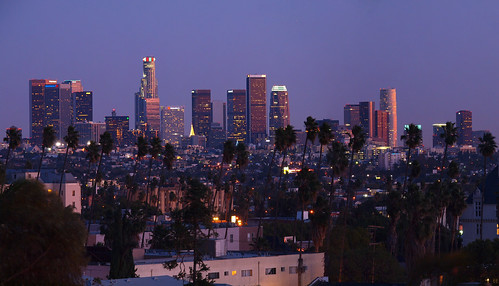 Los Angeles | Skyline | Downtown | Palm Trees | PC033456 Panorama1-1