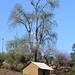 Casita - Small house entre Santo Domingo Ixtcatlán y Santa María Yolotepec (al sur de Chalcatongo, Región Mixteca), Oaxaca, Mexico por Lon&Queta