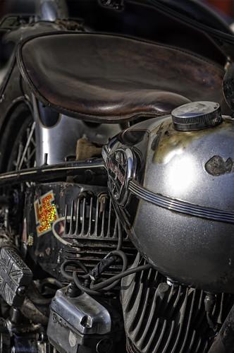Harley 1 by Ollie B.