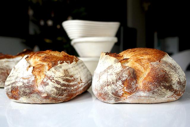 6568750059 ec3b7afdea z 2012. La multe paini! cu Apa.Faina.Sare.