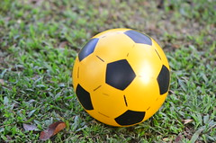 ball, yellow, football, ball, football,
