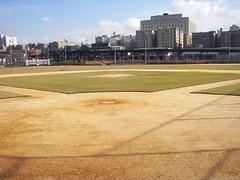 Behind Homeplate at Old Yankee Stadium