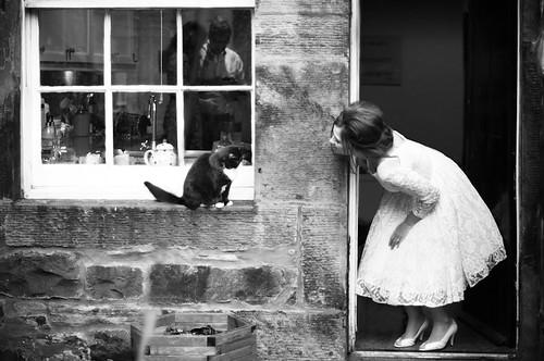 a bride& a cat
