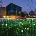 Field of Light at the Holburne Museum by LongLensPhotography.co.uk - Daugirdas Tomas Racys
