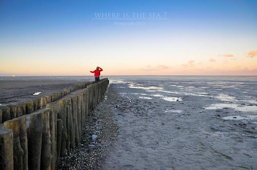 blue sunset sea sky cloud clouds sunrise wonderful lost is meer wasser flickr sonnenuntergang empty tide low where nordsee sonnenaufgang steg ebbe schillig noth woistdasmeer