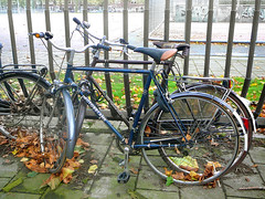 Motob�cane sportfiets (traditional sports bicycle, v�lo mi-course traditionnel), Amsterdam, Olympiaplein, 10-2011