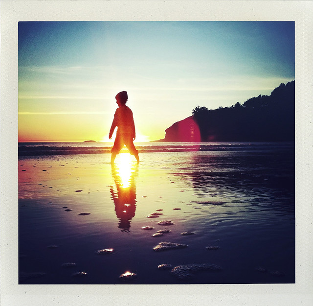Muir Beach Reflections