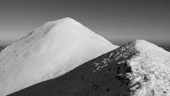 Monte Acuto (Appennino pesarese)