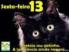 013/366 - Proteja todos os gatinhos pretos dos ignorantes nesta sexta-feira 13 by Rô♥Bastos