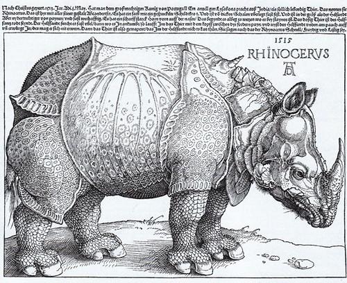 Albrecht Dürer_ Rhinocerus woodcut