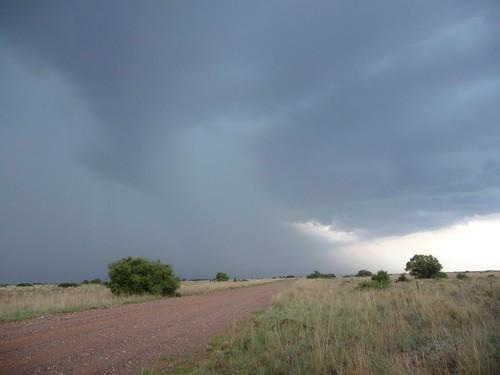 Kalahari pt 1