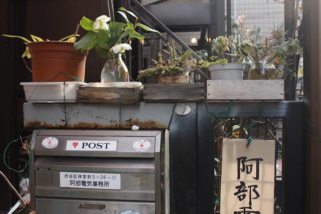 Tokyo Winter Gardens