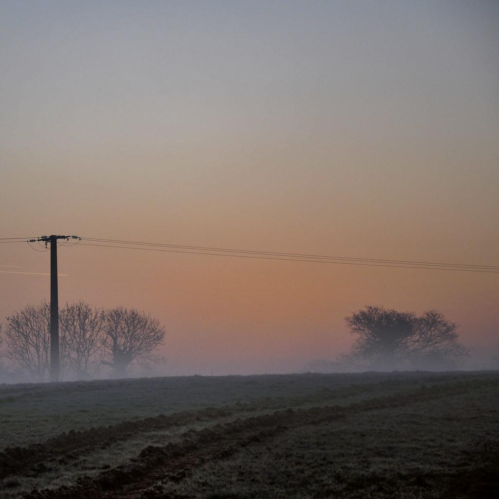 Petit matin brumeux dans la campagne Normande (2242)