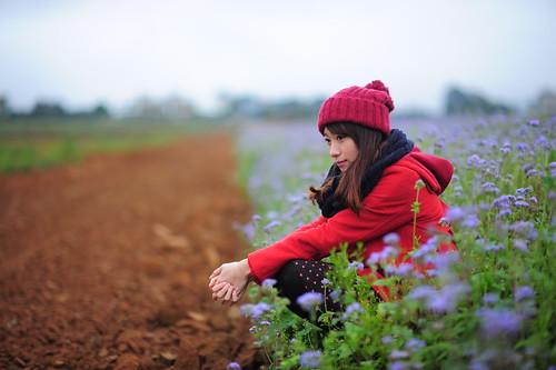 [フリー画像素材] 人物, 女性 - アジア, 帽子, 女性 - 座る, 人物 - 花・植物, 台湾人 ID:201201310800