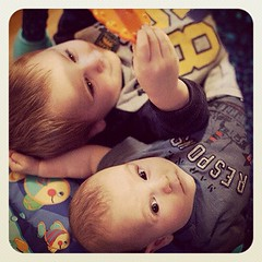 I made these two, with great help. #day25 #janphotoaday