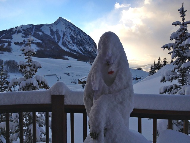 Due to last night's blizzard, the snowbride is now wearing a fashionable veil.