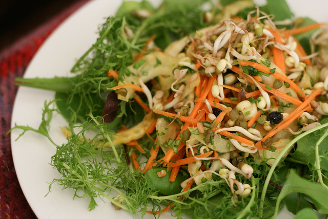 Mung Beans Sprout Salad with Carrots and Fennel