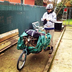GreenCycle Services Christmas Tree Pick Up