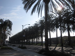 CHA Day 4: Leaving Anaheim!