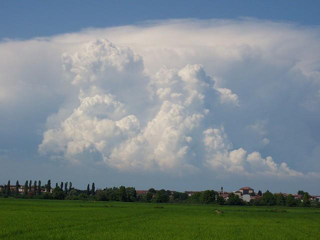 Cumulus_congestus_2