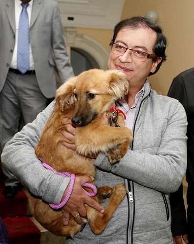 Gustavo Petro - Adopcion de perrita llamada Bacata