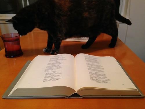 Das große deutsche Gedichtbuch