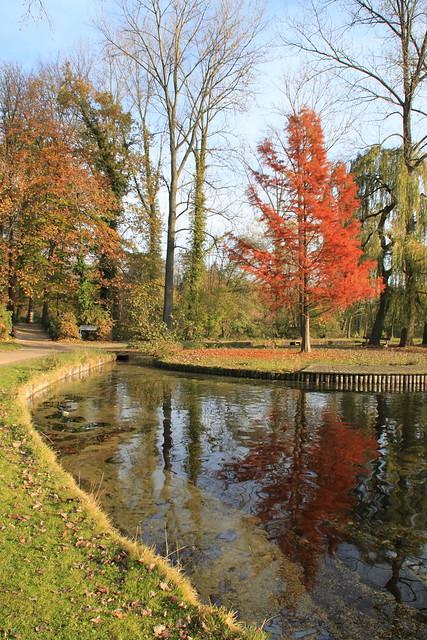 autunno, Provinciaal Domein Kessel-Lo